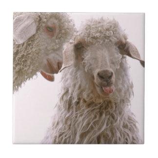 Dos cabras tontas azulejos