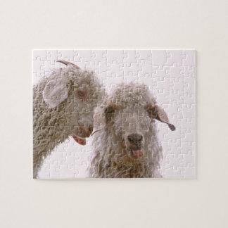 Dos cabras tontas rompecabeza