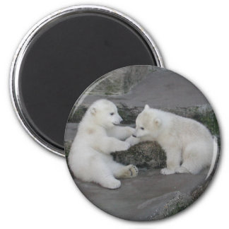 Dos cachorros del oso polar imán redondo 5 cm