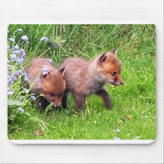 dos cachorros del zorro alfombrilla de raton