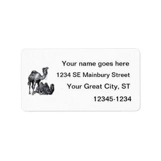 Dos camellos una situación una que miente abajo di etiquetas de dirección