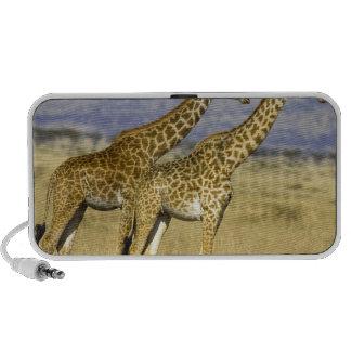 Dos camelopardalis del Giraffa de las jirafas del  iPod Altavoces
