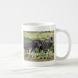 Dos cebras taza básica blanca