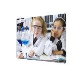 Dos chicas en capas del laboratorio del uniforme e lona estirada galerias