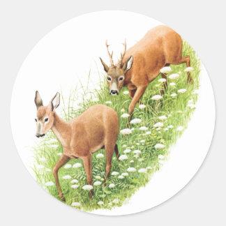 Dos ciervos en la hierba alta, ejemplo del vintage etiquetas redondas