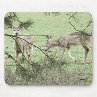 Dos ciervos y pinos alfombrillas de ratones