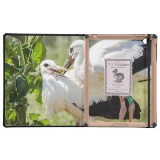 Dos cigüeñas jovenes fotografía del animal de los iPad carcasas
