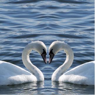 Dos cisnes en el agua fotoescultura vertical