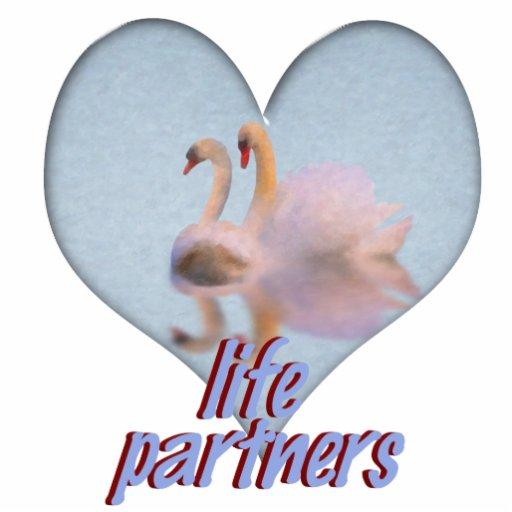 Dos cisnes que nadan junto escultura fotografica