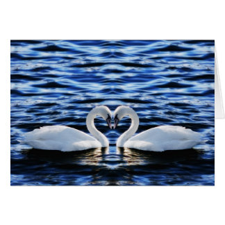 Dos cisnes felicitacion