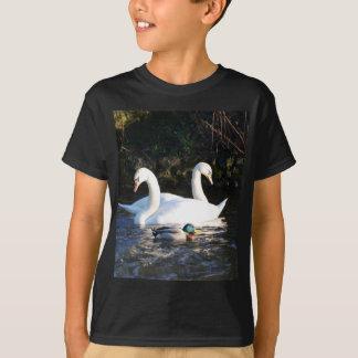 Dos cisnes y un pato playera
