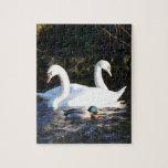 Dos cisnes y un pato puzzle