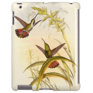 Dos colibríes coloridos que apuntan para la misma funda para iPad