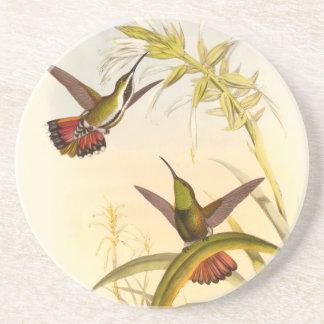 Dos colibríes coloridos que apuntan para la misma posavasos personalizados