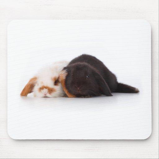 Dos conejitos lindos del bebé alfombrilla de ratones