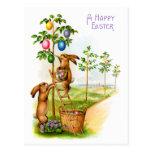 Dos conejos de adornamiento tarjetas postales