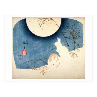 Dos conejos en la hierba de pampa postales