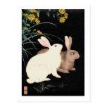 Dos conejos en la noche postal