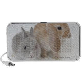 Dos conejos. Enano y Holanda Lop. de Netherland PC Altavoces
