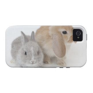 Dos conejos. Enano y Holanda Lop. de Netherland Case-Mate iPhone 4 Funda