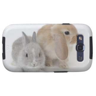 Dos conejos. Enano y Holanda Lop. de Netherland Galaxy SIII Cárcasas