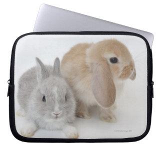 Dos conejos. Enano y Holanda Lop. de Netherland Funda Computadora