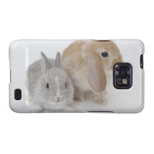 Dos conejos. Enano y Holanda Lop. de Netherland Samsung Galaxy SII Funda