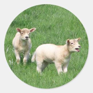 Dos corderos pegatinas redondas