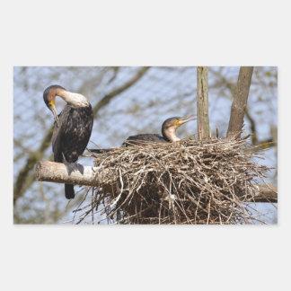 Dos cormoranes del gret en jerarquía rectangular pegatina