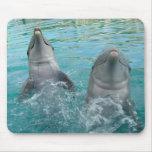Dos delfínes alfombrilla de raton