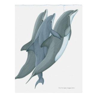 Dos delfínes de Bottlenosed Postal