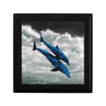 Dos delfínes que nadan en el mar cajas de regalo