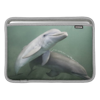 Dos delfínes subacuáticos fundas macbook air