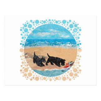 Dos escoceses en la playa tarjetas postales