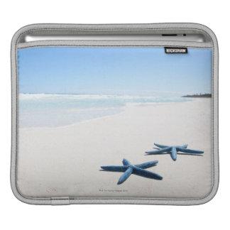 Dos estrellas de mar azules en el borde del agua e manga de iPad