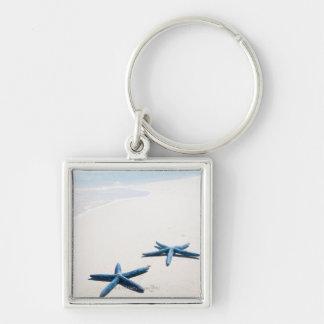 Dos estrellas de mar azules en el borde del agua e llaveros
