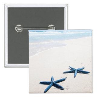 Dos estrellas de mar azules en el borde del agua e pins