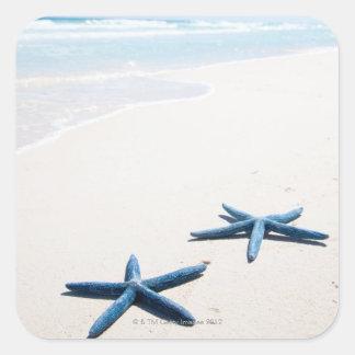Dos estrellas de mar azules en el borde del agua pegatina cuadradas