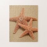 Dos estrellas de mar del azúcar puzzle con fotos