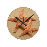 Dos estrellas de mar del azúcar reloj