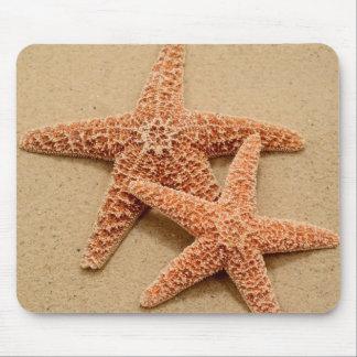 Dos estrellas de mar del azúcar mousepad