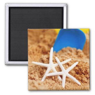 Dos estrellas de mar en la playa imán cuadrado