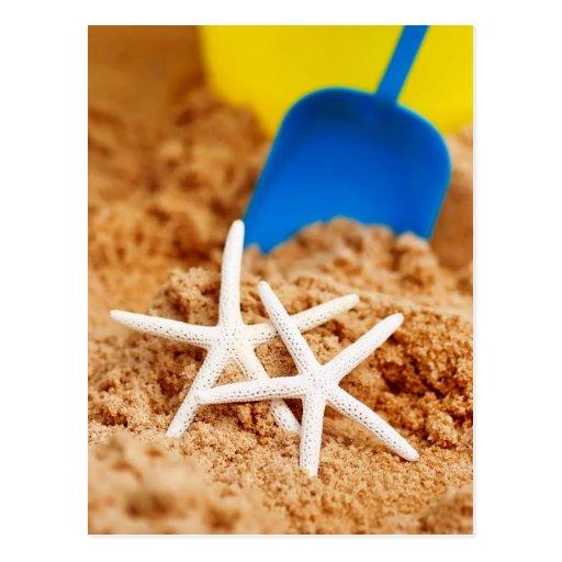 Dos estrellas de mar en la playa tarjeta postal