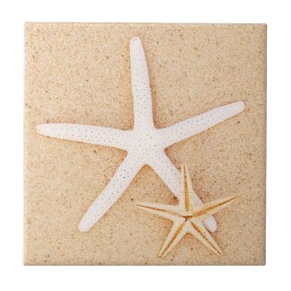 Dos estrellas de mar en una playa azulejo cuadrado pequeño
