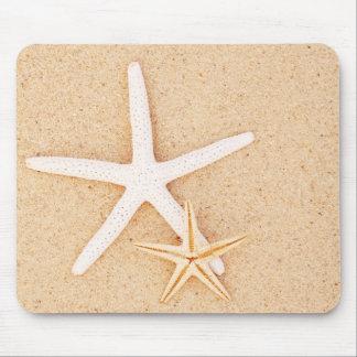 Dos estrellas de mar en una playa tapete de ratones