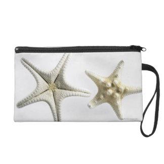 Dos estrellas de mar espinosas