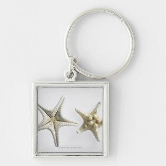 Dos estrellas de mar espinosas llavero cuadrado plateado