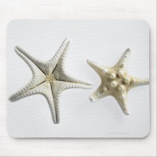 Dos estrellas de mar espinosas tapete de ratón