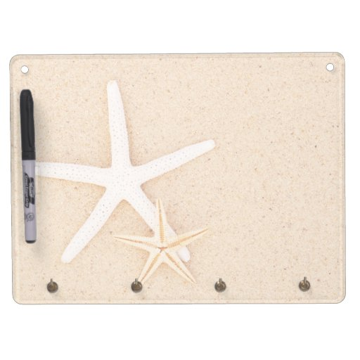 Dos estrellas de mar secan al tablero del borrado tableros blancos