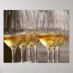 dos filas de los vidrios de la degustación de vino póster